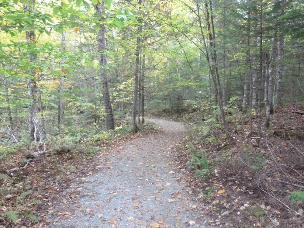 Moxie Falls Trail start (Credit: Chris Nason)