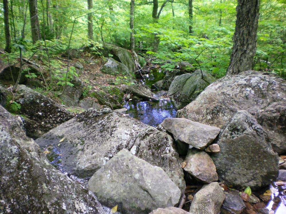 Brook Trail - Mountain runoff. (Credit: Chris Nason)
