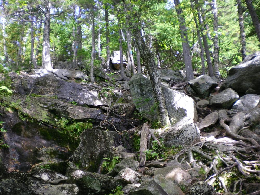 Brook Trail - Keep Climbing. (Credit: Chris Nason)