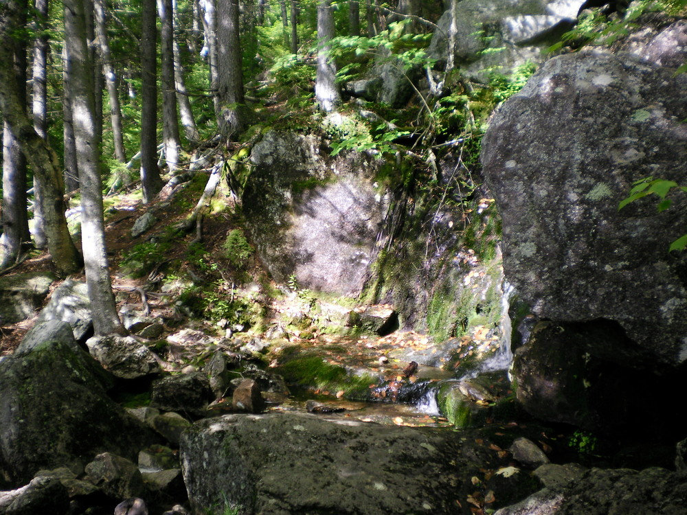 Brook Trail - Small waterfall in a little alcove near the trail. (Credit: Chris Nason)