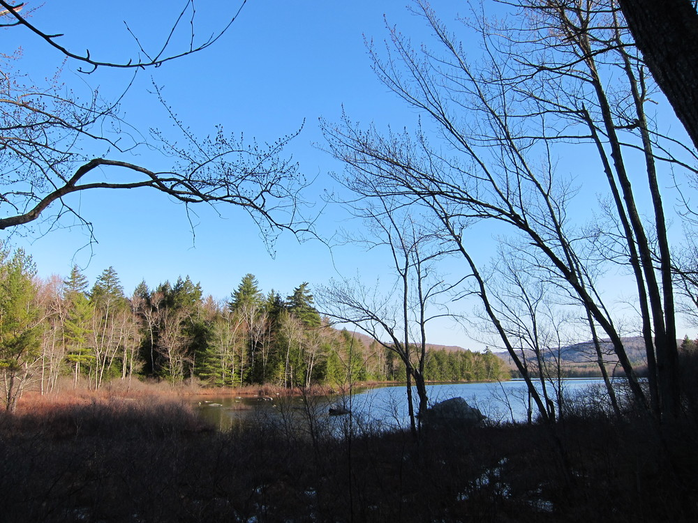 Watson Pond from Sanders Hill trail (Credit: M. Morris)