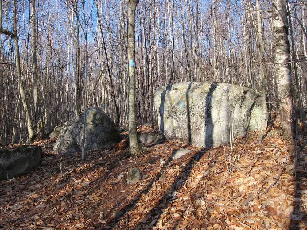Boulders along Sanders Hill trail (Credit: M.Morris)