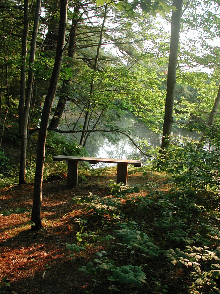Stroudwater Trail Bench (Credit: Portland Trails)