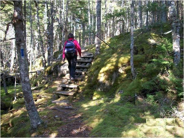 Trail (Credit: Maine Bureau of Parks and Lands)