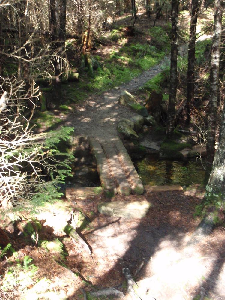Valley Peak Trail (Credit: National Park Service)