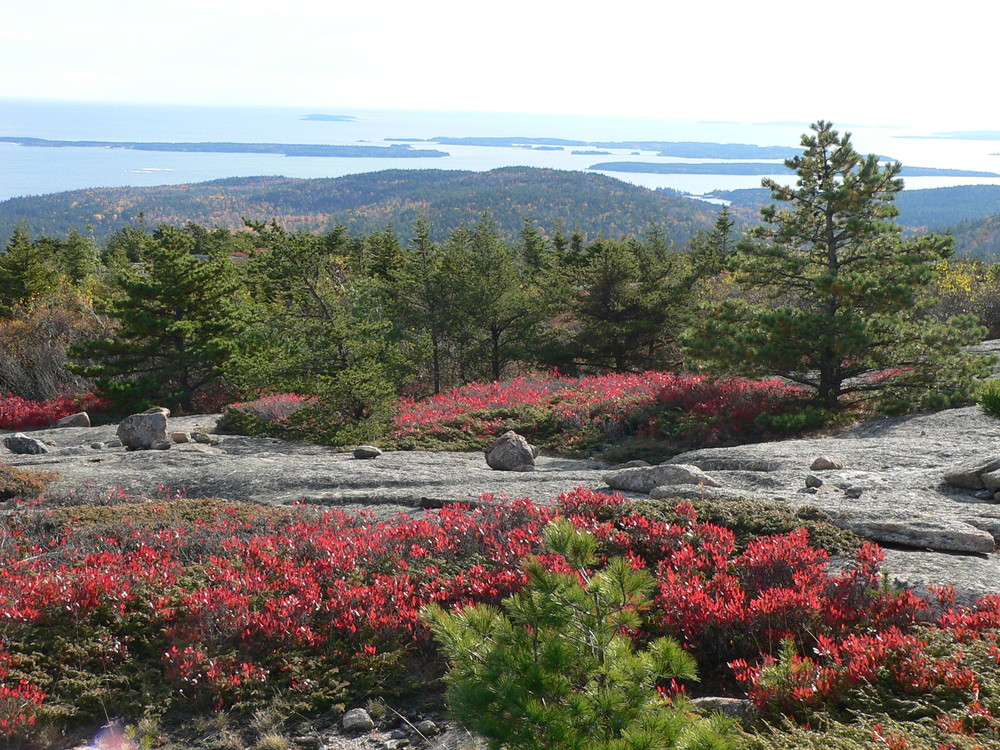 Views from Champlain South Ridge Trail (Credit: National Park Service)