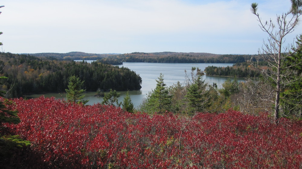 View from the Summit (Credit: Downeast Coastal Conservancy)
