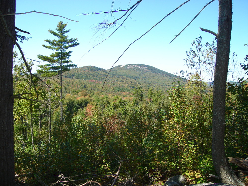 View of Great Pond Mountain from Esker Path (Credit: Great Pond Mountain Conservation Trust)
