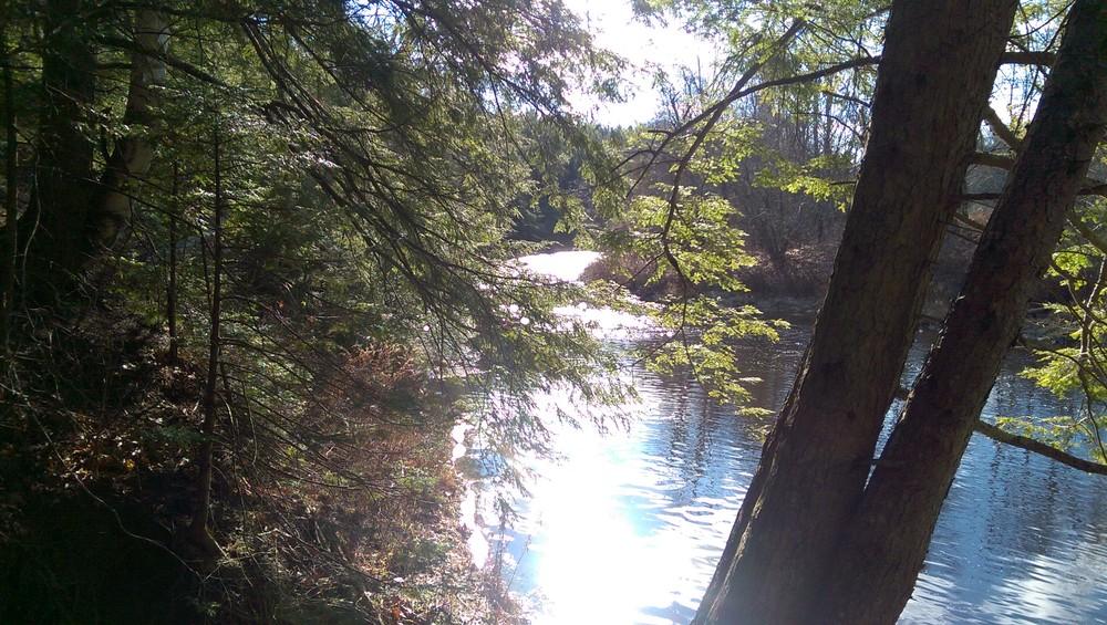 Little River Property