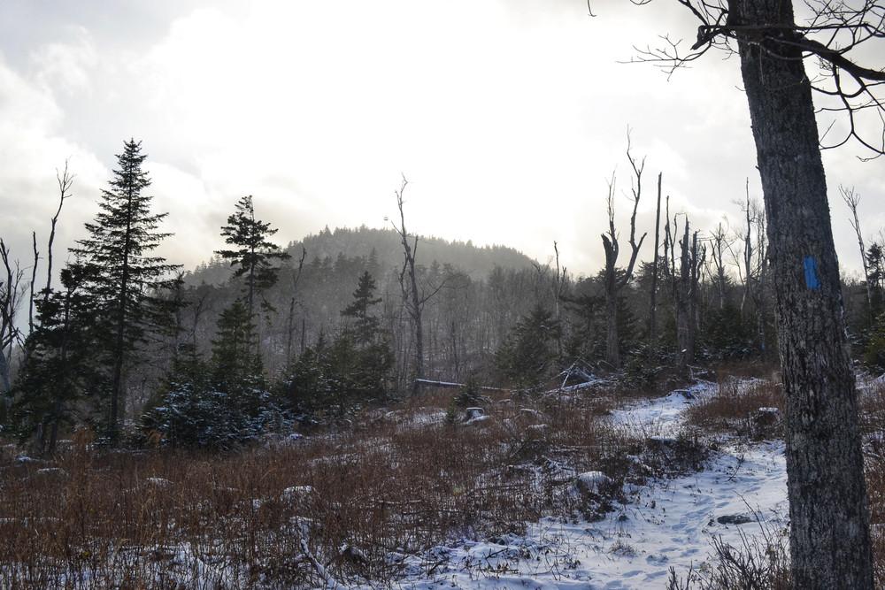 Williams Mountain
