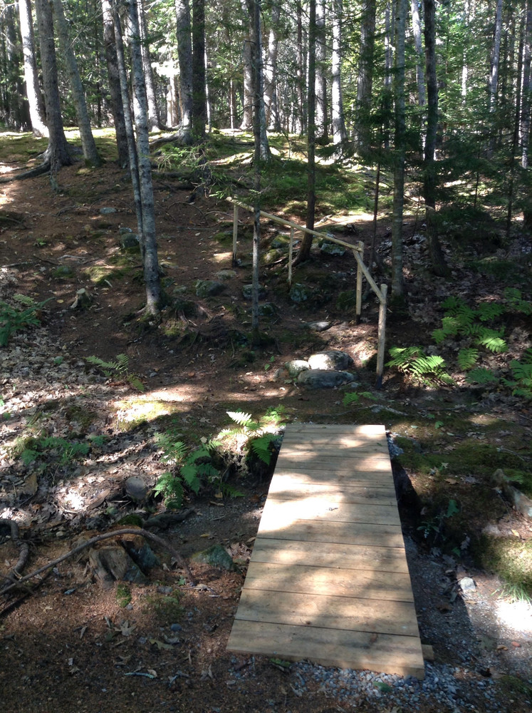 Bridge and steps lead into the Zendo Moss Garden (Credit: Morgan Bay Zendo)