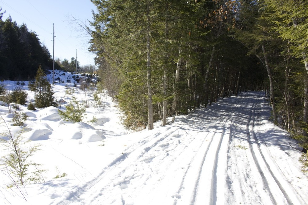 Well groomed trails in the winter (Credit: Bangor Daily News )