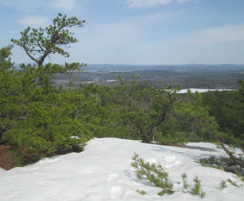 Foster Pond from the Summit (Credit: Roger Brown)