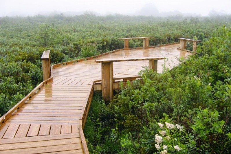 Boardwalk (Credit: Downeast Coastal Conservancy)