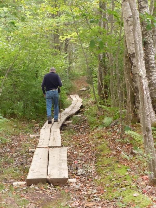 Bridging along the bog trail (Credit: Friends of Sears Island)