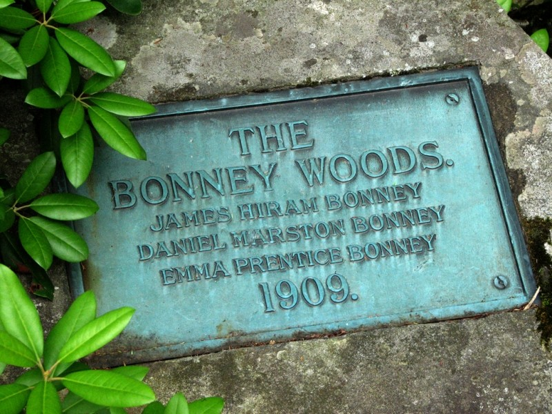 Plaque commemorating the initial donation and founding of Bonney Woods. (Credit: Joel Alex)
