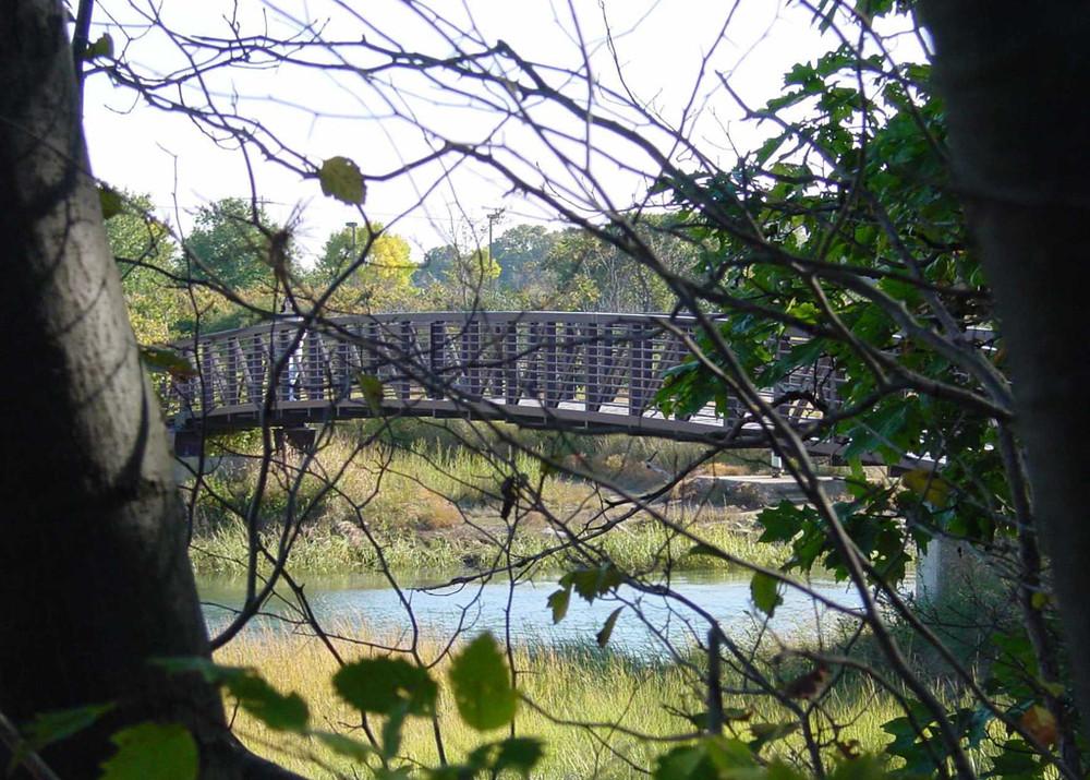 Steel Bridge (Credit: Portland Trails)