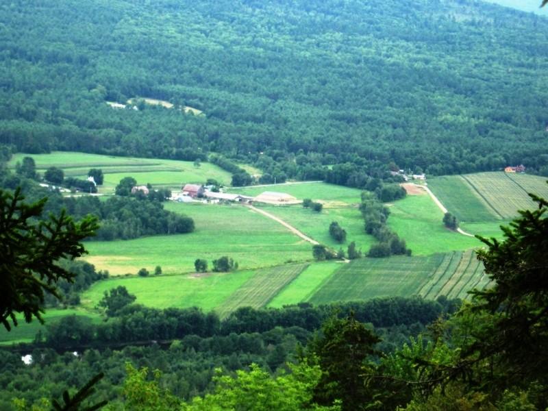 Carter Farm (Credit: Landon Fake)