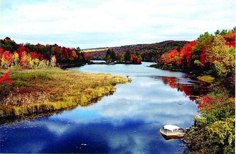 Cove in the fall (Credit: Lake George Regional Park)
