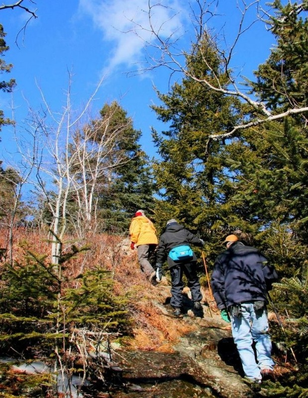 Hikers climbing the last steep pitch (Credit: Downeast Coastal Conservancy)
