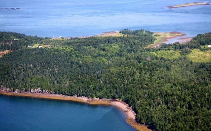Aerial view of southern shore (Credit: Downeast Coastal Conservancy)