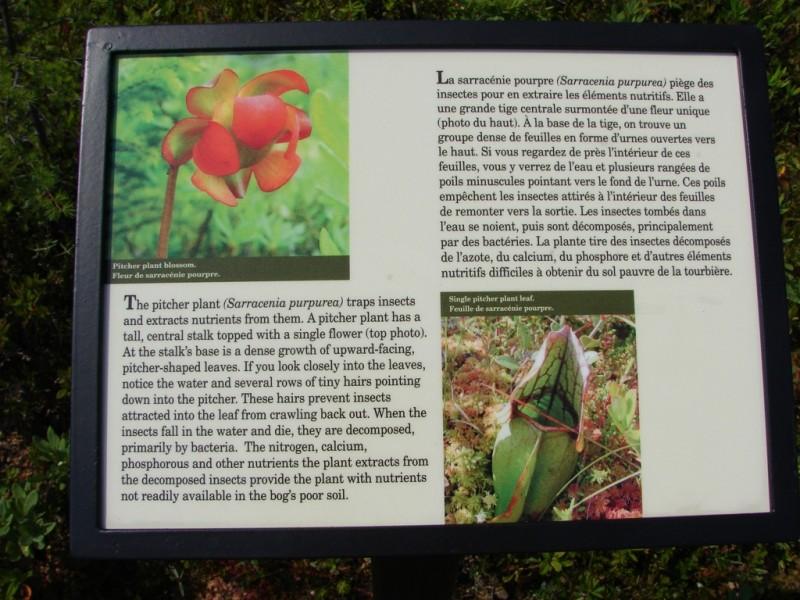 One of many informational panels (Credit: Roosevelt Campobello International Park)
