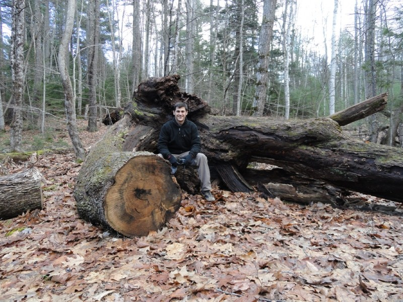Fallen tree at the intersection of Ravine and Hardwood Slope Trails (Credit: Center for Community GIS)