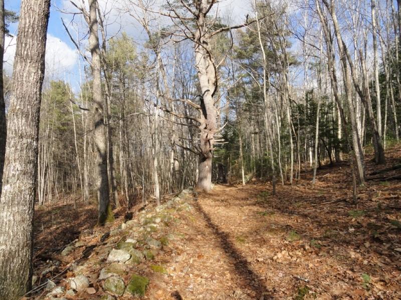 Hardwood Slope trail (Credit: Center for Community GIS)