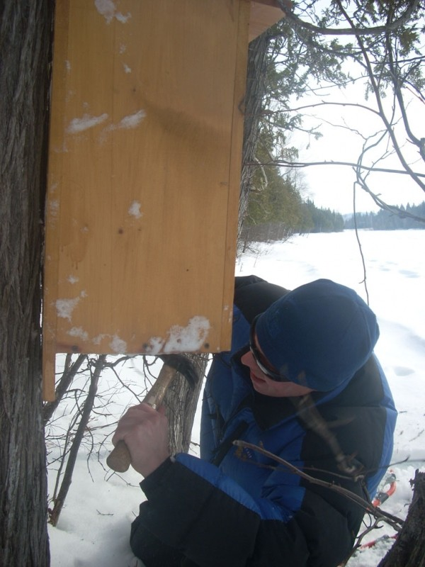 A duck box is installed in the winter to provide habitat for and encourage wildlife (Credit: Shelby Rousseau)