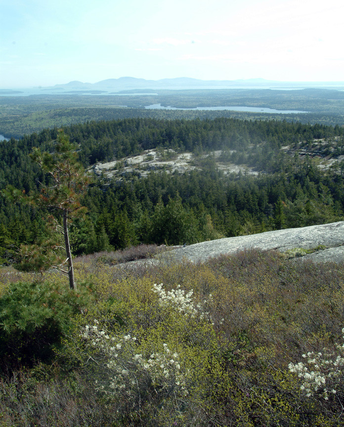 View towards the Coast (Credit: Maine Bureau of Parks and Lands)