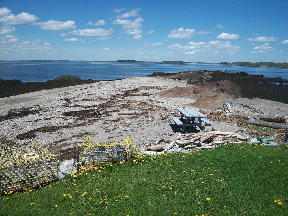 Eagle Island picnic area (Credit: BPL)