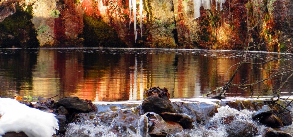 reflections (Credit: gary janson)