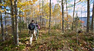 Birch Point (Credit: Maine Huts & Trails)