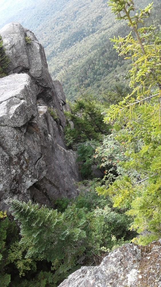 Upper section Loop Trail thru this gulch