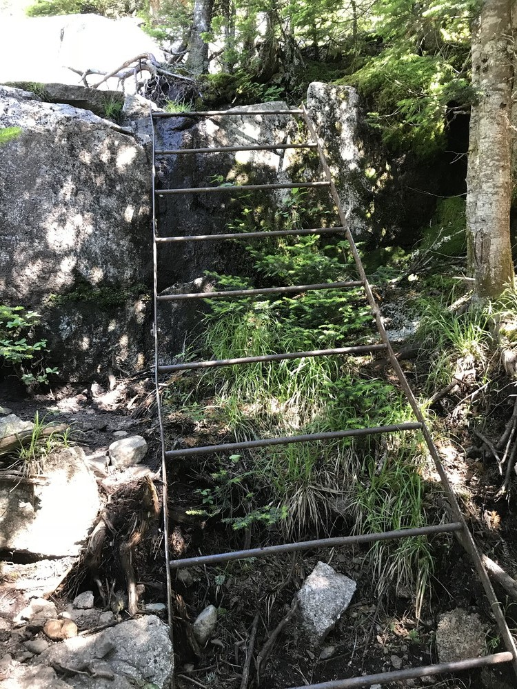 Berry Picker's Trail to Saddleback or the Horn (via Appalachian Trail)