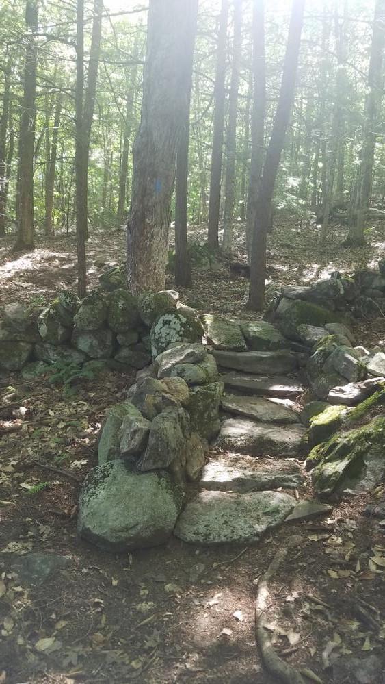 Shepard's Farm Family Preserve