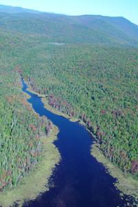 View of Harper's Meadow (Credit: Ian Drew/USFWS)