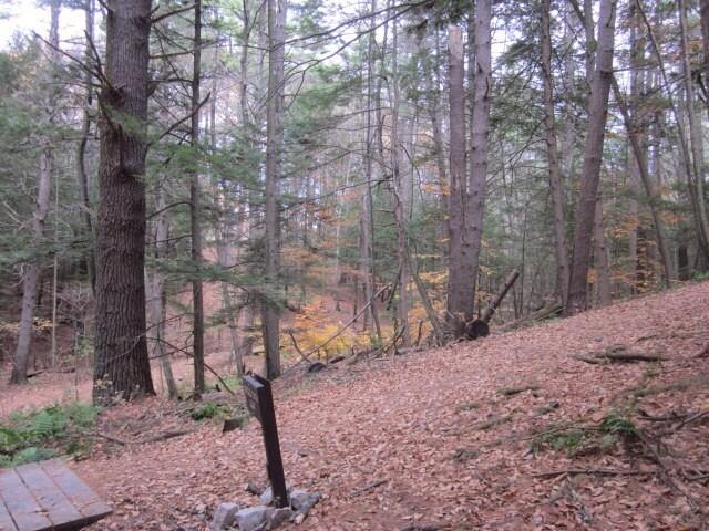 3- Trail photo