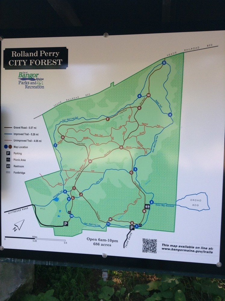 New trail maps are scattered throughout the forest to help you find your way (Credit: N. Grohoski)