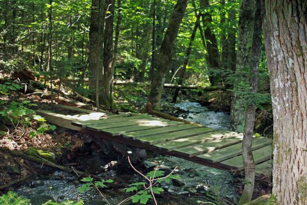 Bridge (Credit: Nordic Heritage Center)