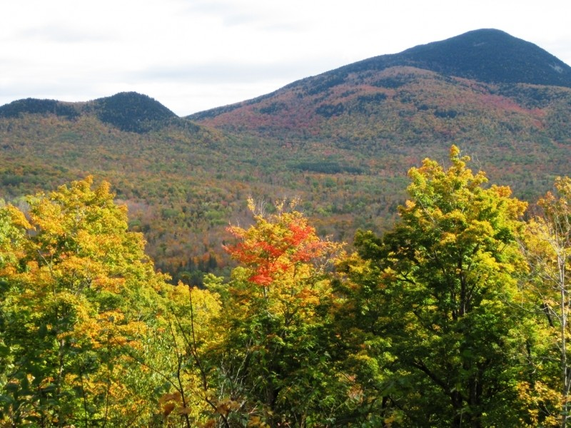 Mt. Blue Overlook (Credit: Stephen Engle)