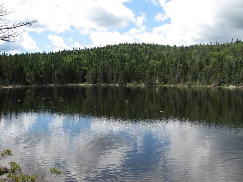 Rock Pond (Credit: Center for Community GIS)