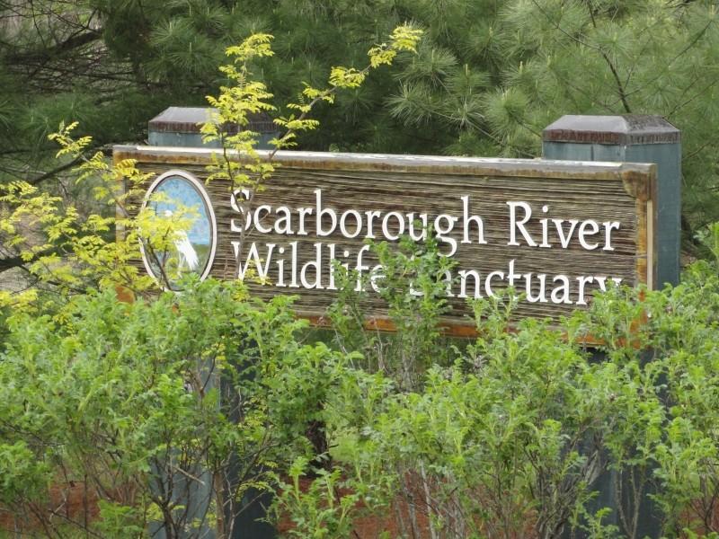 Sanctuary Sign (Credit: Center for Community GIS)