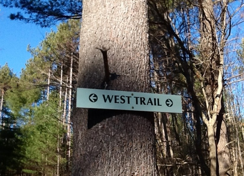 Signage for the West Trail as it heads across the Access Road (Credit: Karen McCann)