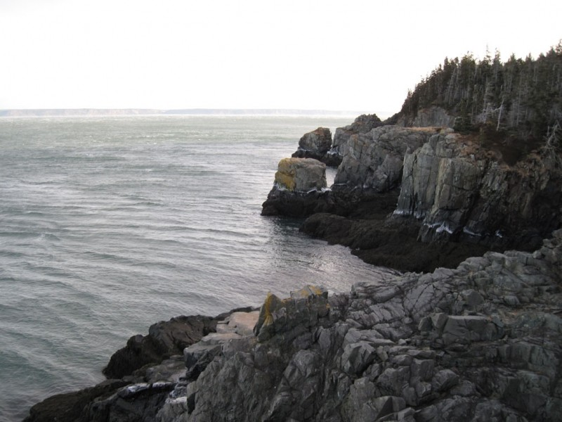 View along newly completed Coast Guard Trail (Credit: Maine Bureau of Parks and Lands)