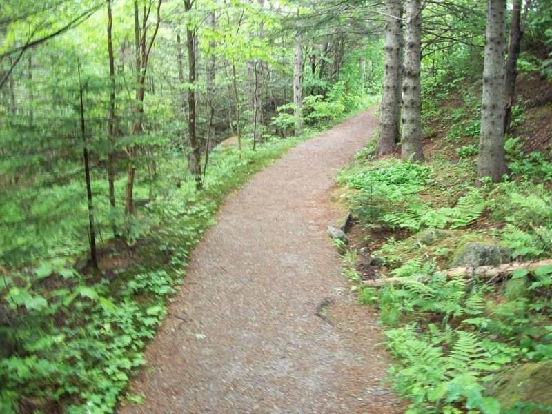 Mother Walker Falls (Credit: Maine Bureau of Parks and Lands)