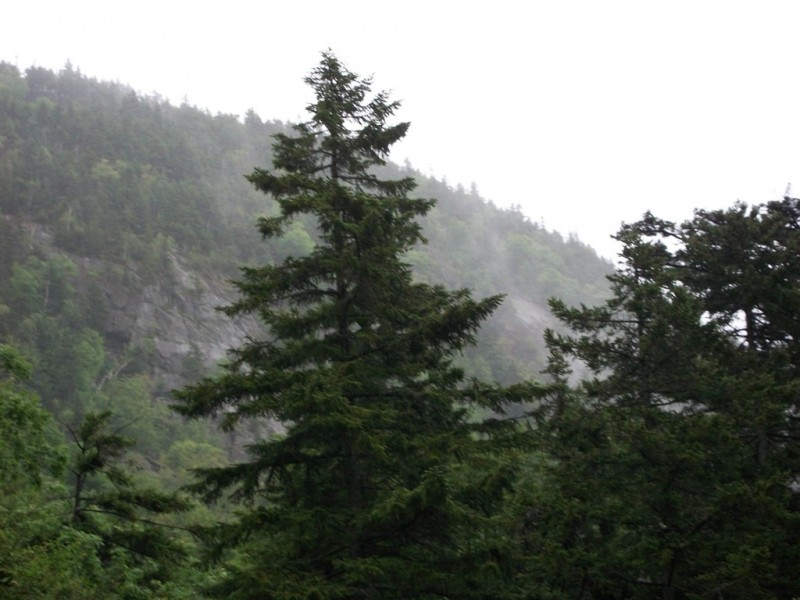 Looking up to Table Rock from the Moose Cave parking area. (Credit: Maine Bureau of Parks and Lands)