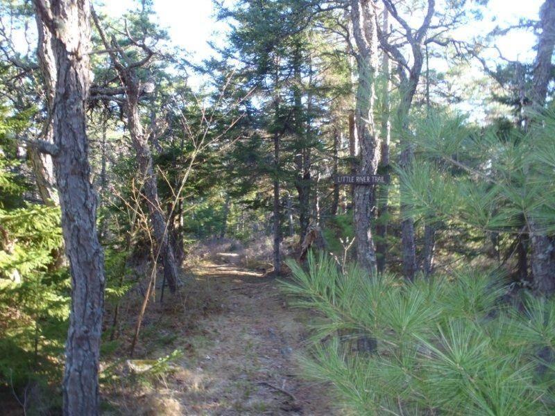 Little River Trail (Credit: Maine Bureau of Parks and Lands)