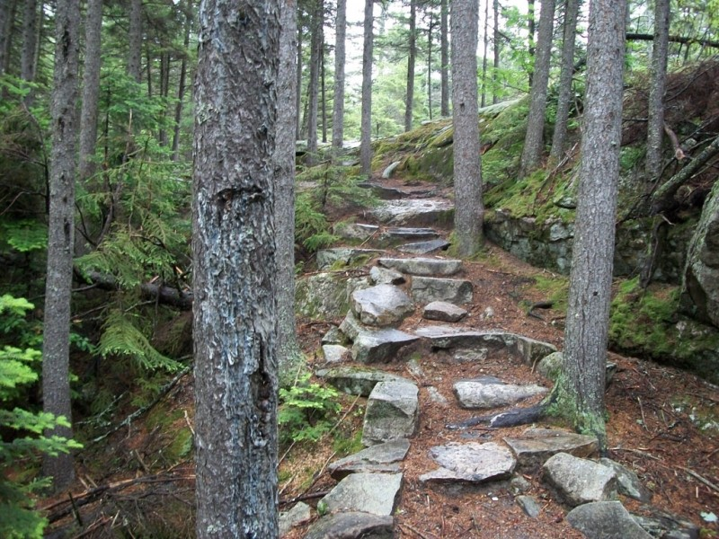 Moose Cave Trail (Credit: Maine Bureau of Parks and Lands)