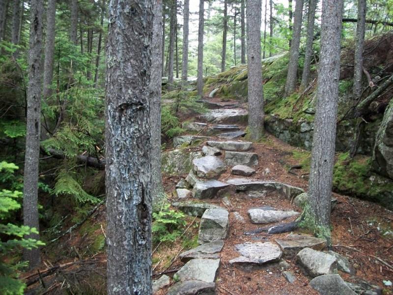 Moose Cave Trail (Credit: Maine Bureau of Parks and Lands)